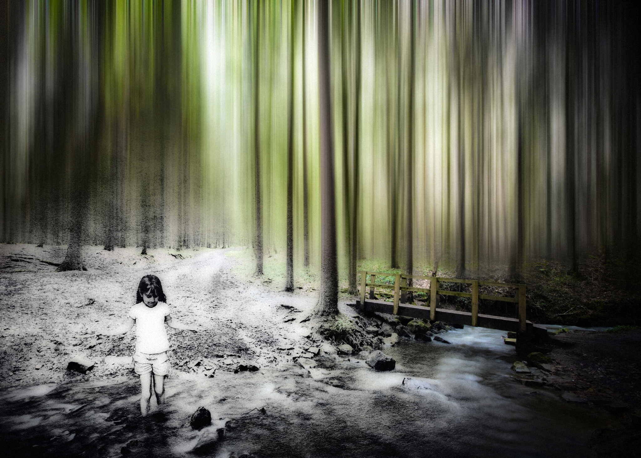 – daughter in the woods –