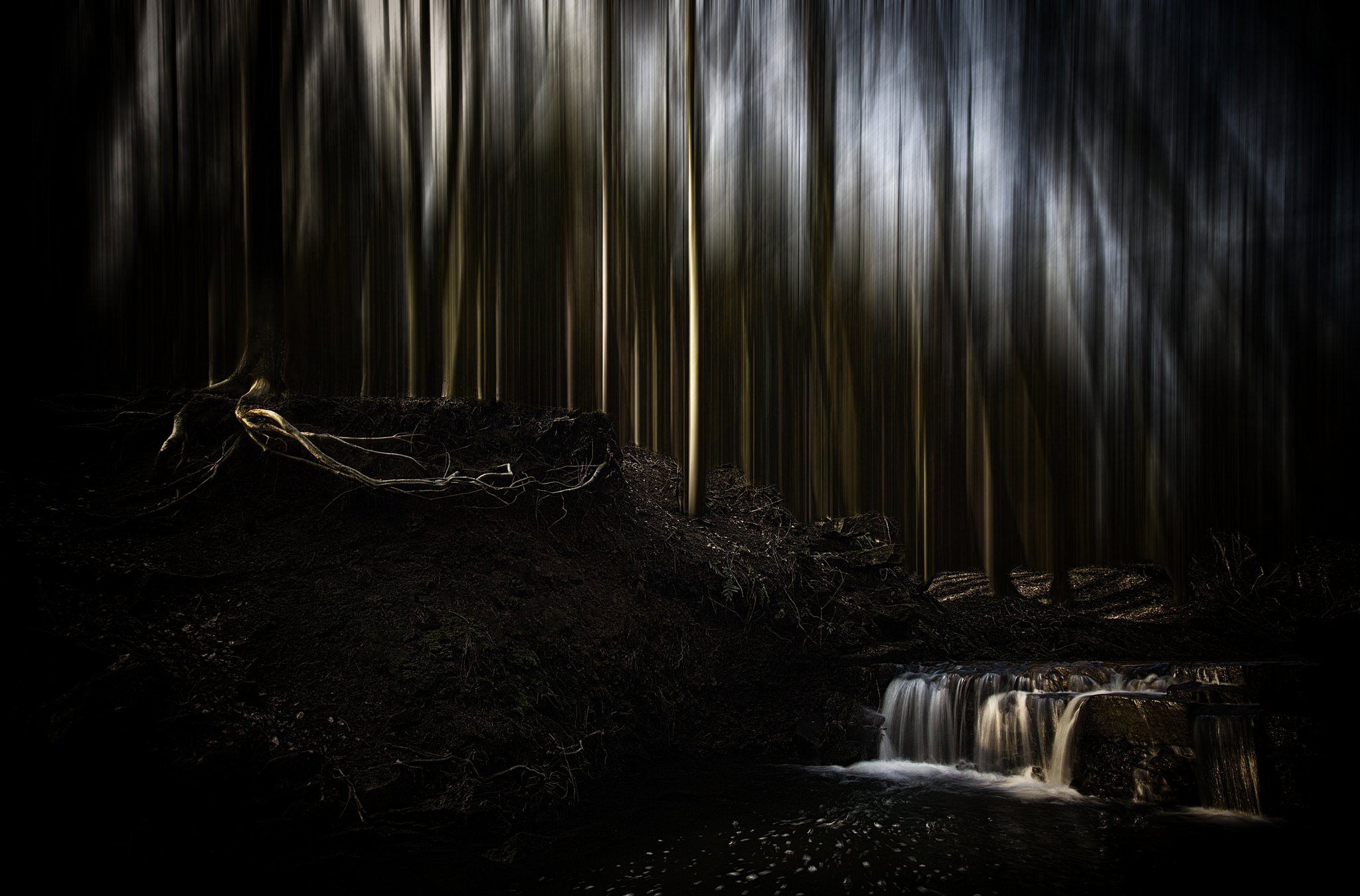 – roots of the waterfall –