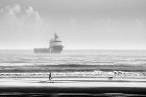 - ship, man, dog, beach -